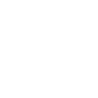 Red Dog Crossfit